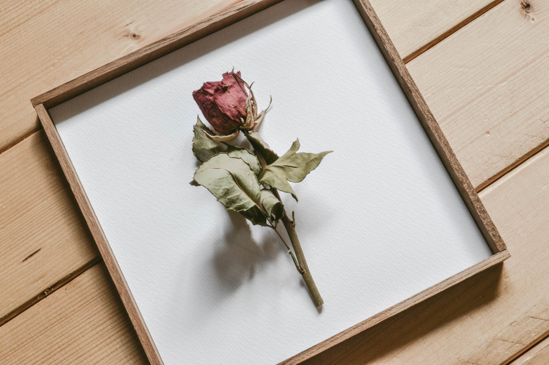 【diy/009】花が映える-額-